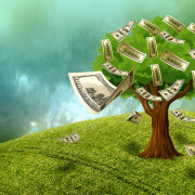 moneyontree